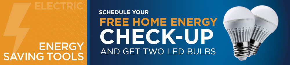 Schedule Your Free Energy Check-Up