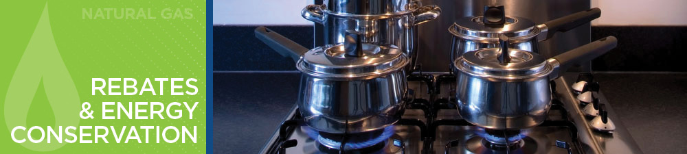 Natural Gas Rebates and Energy Conservation